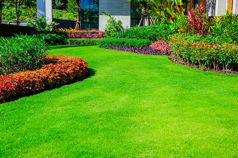 3 Things to Look For in a Landscape Designer